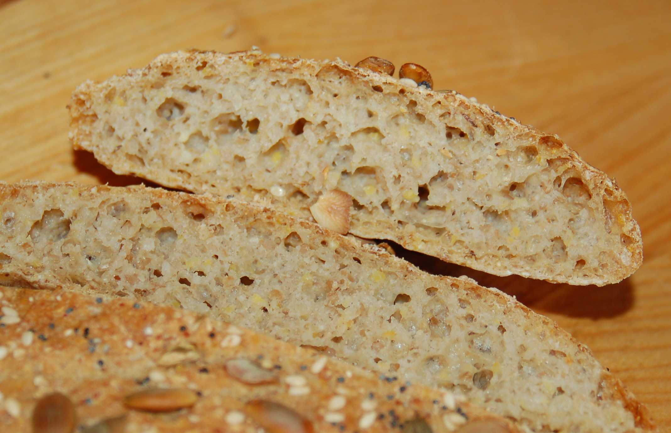 bread for thoughts Our daily bread daily devotions when torrential downpours beat on the heads of my newly planted petunias, i felt bad for them i wanted to bring them inside to.